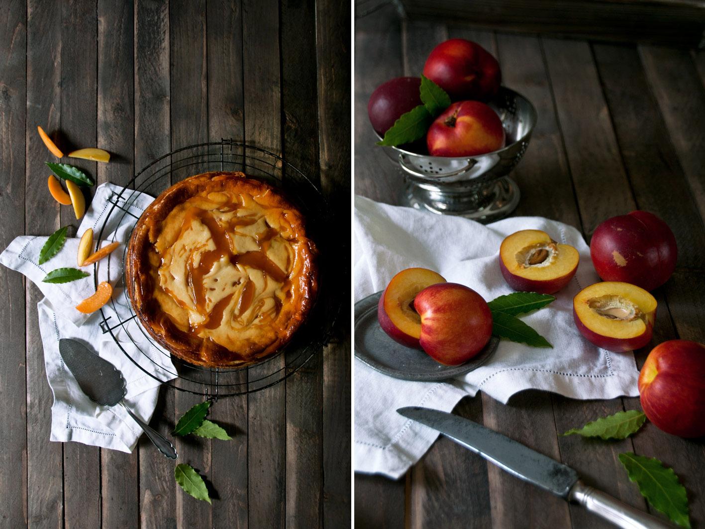 cheesecake mit aprikose