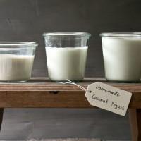 selbstgemachter kokos joghurt