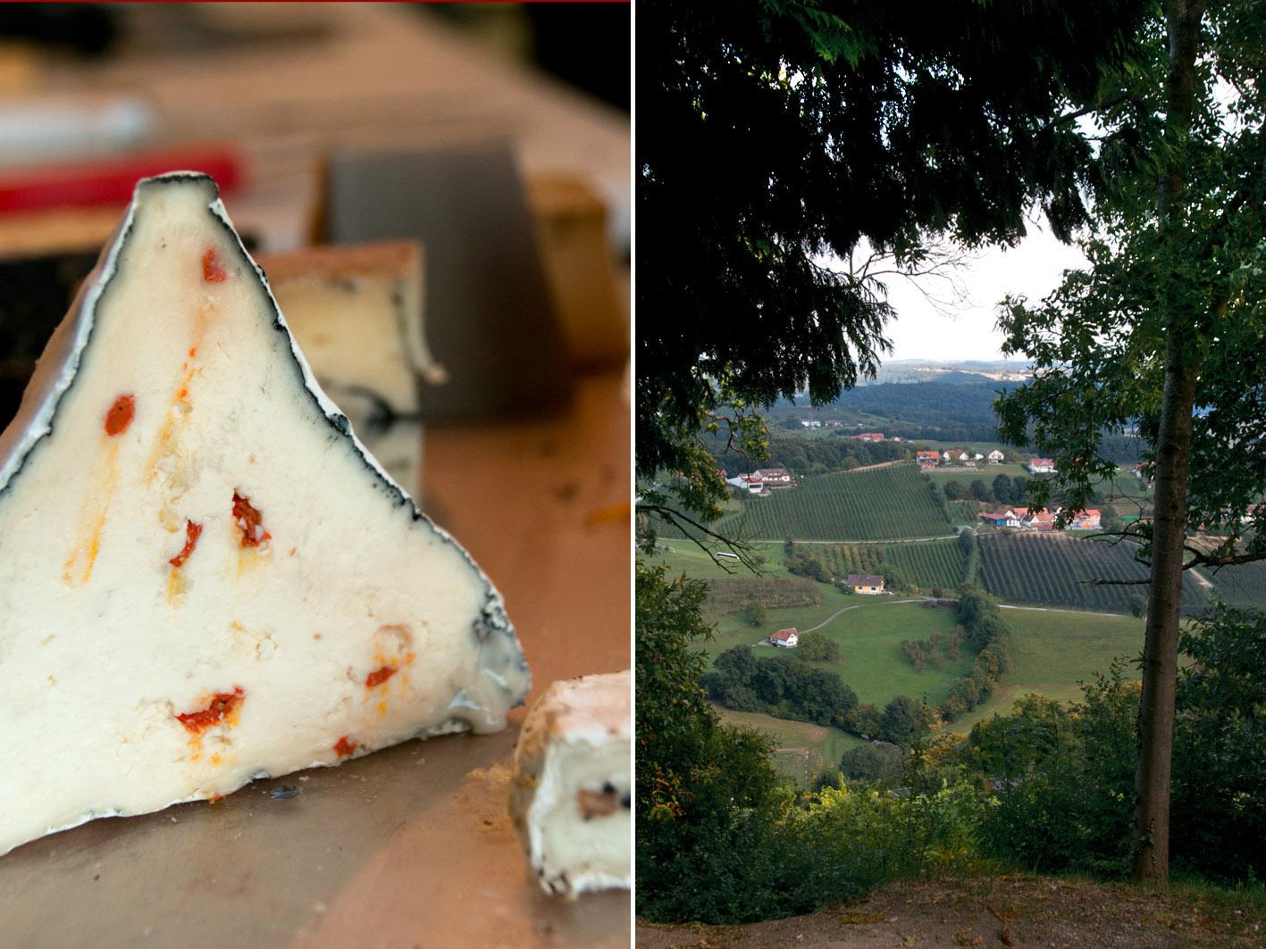 cheese artist riegersburg