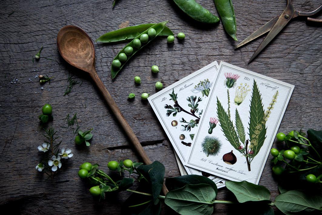 rezept mit frischen Erbsen foodlovin