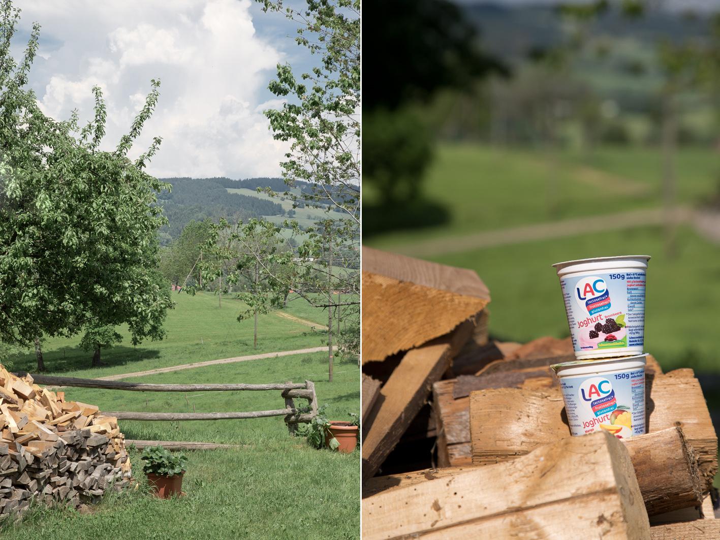 Schwarzwaldmilch Laktosefrei