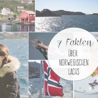 7 Fakten über norwegischen Lachs