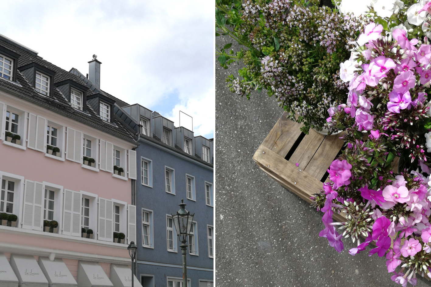 Carslplatz Düsseldorf Blumen