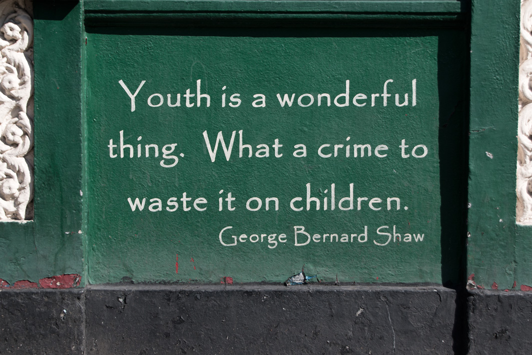 Quote George Bernard Shaw