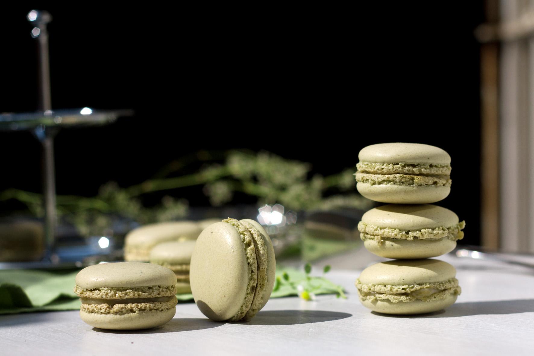 rhabarber-macarons-3