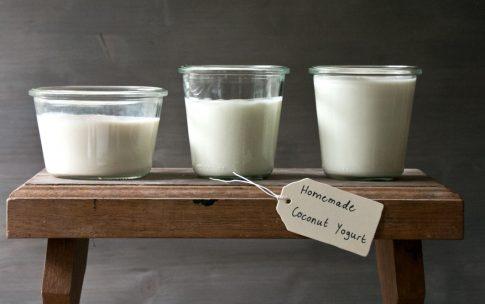 Selbstgemachter Joghurt aus Kokosmilch mit Sommer-Müsli.