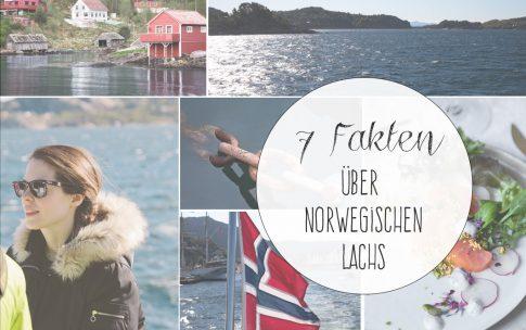 7 Fakten über norwegischen Lachs und 7 Lachs-Rezepte.
