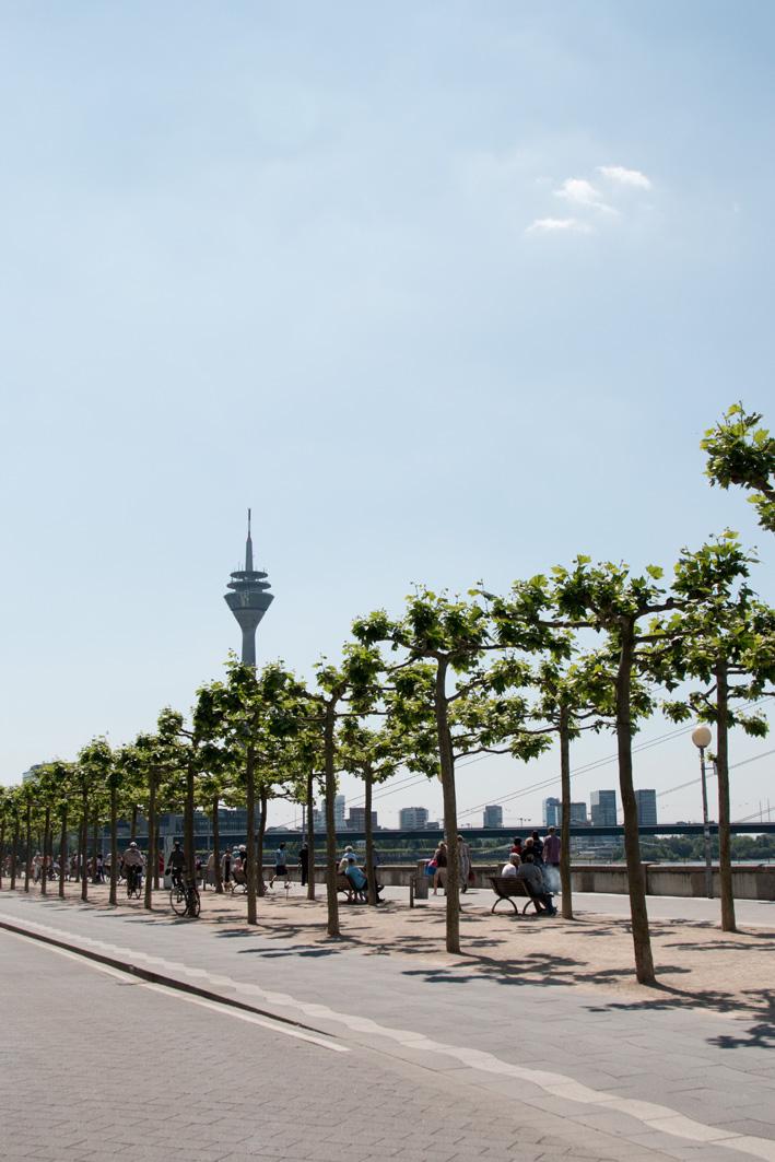 Rheinpromenade Düsseldorf