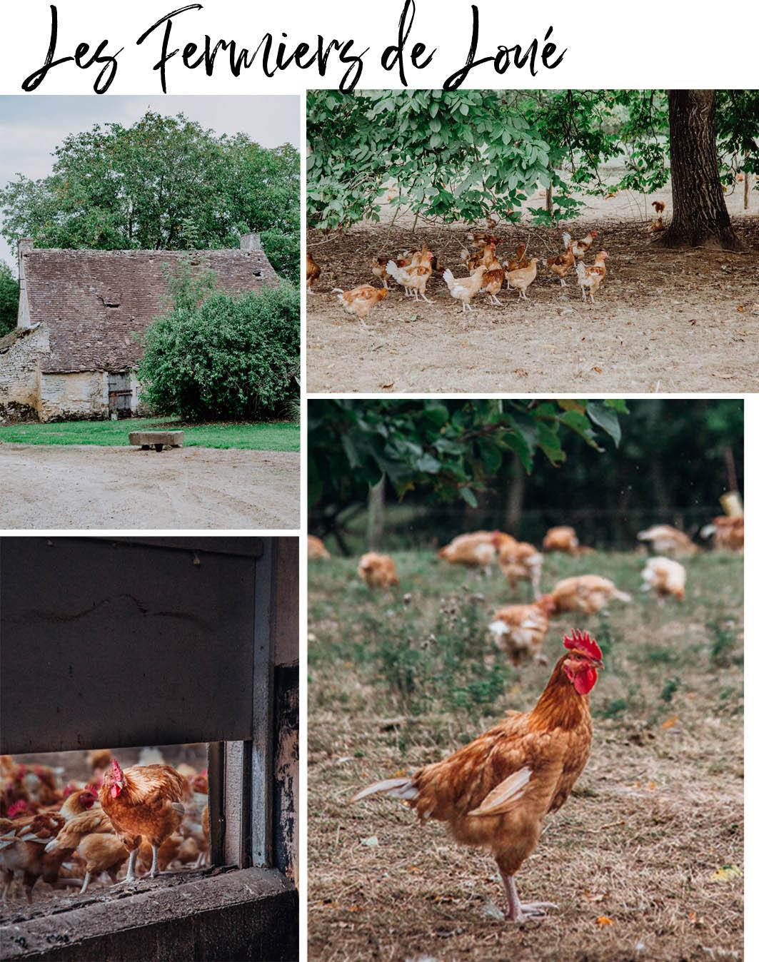 Hühnerhof in Loue