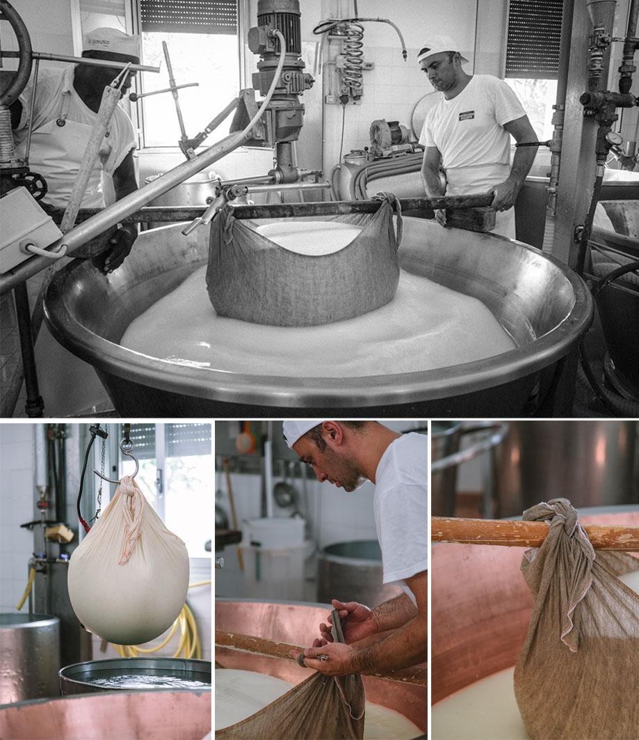 Parmesan Herstellung in Parma