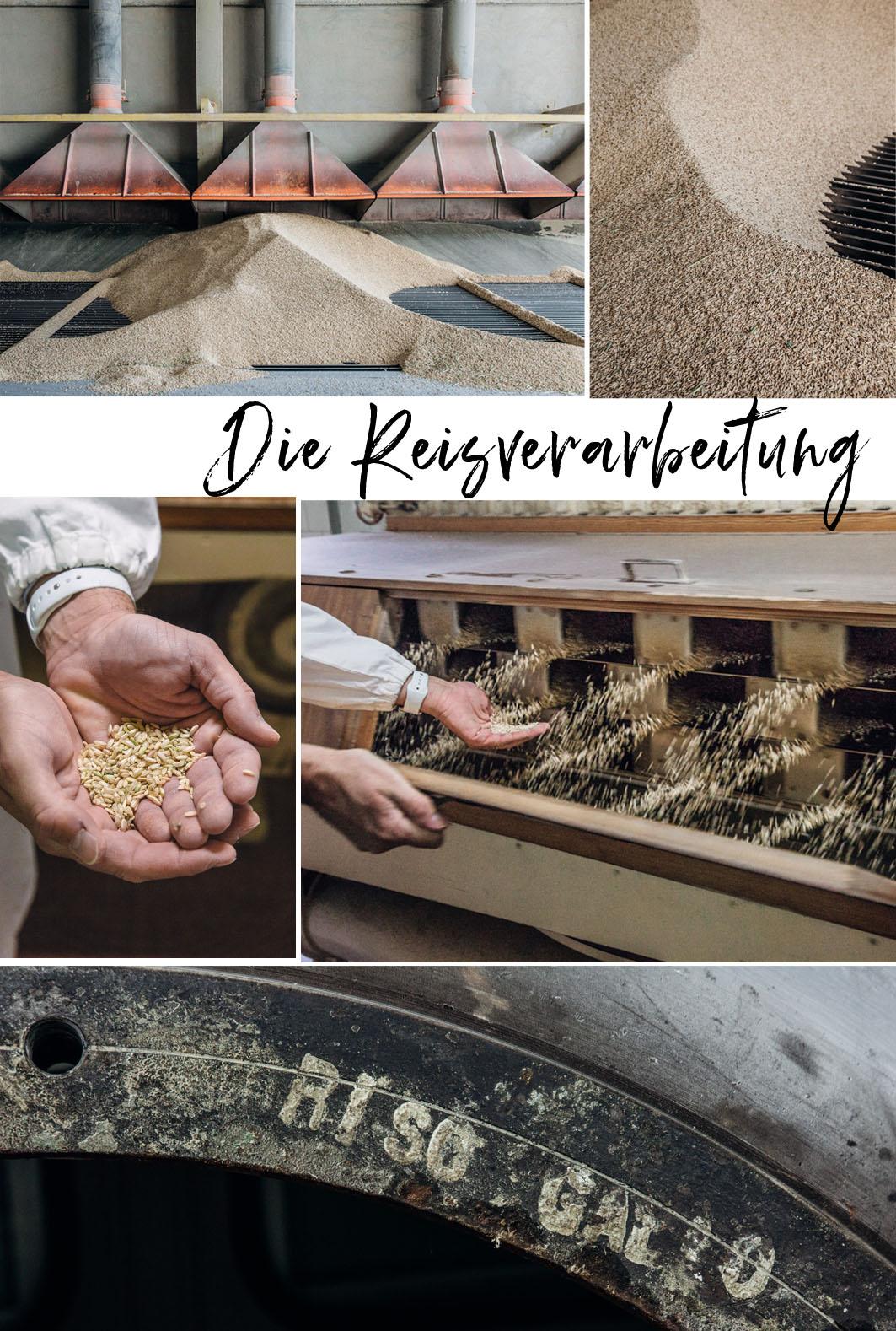 Reisverarbeitung Riso Gallo